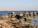 Южное побережье Болгарии_41